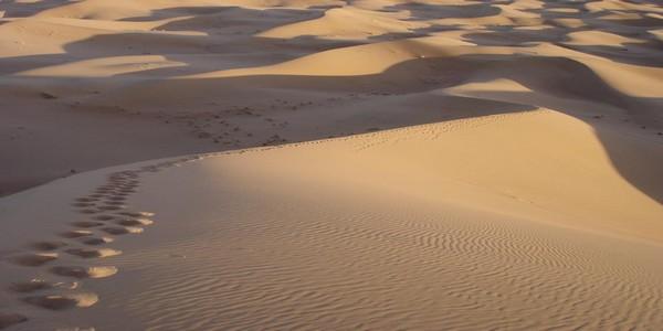 chegaga-dunes